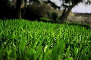 Антикейс: сливаем на газон с ROI -100% на lucky.online
